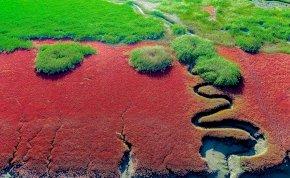 Ismét csodás színben pompázik a Vörös Strand