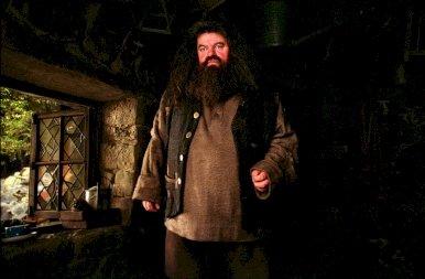 Teljesült a Harry Potter rajongók álma: mostantól bárki eltölthet egy éjszakát Hagrid kunyhójában! – képek
