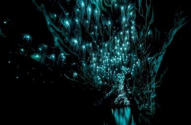 Láss világot: íme Új-Zéland legszebb barlangja, amit világító lárvák tesznek különlegessé – galéria