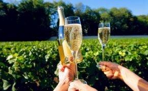 Sara Sampaio melltartó nélkül ünnepelte meg a pezsgő nemzetközi napját